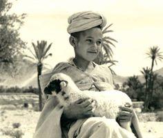 Retro print morocco
