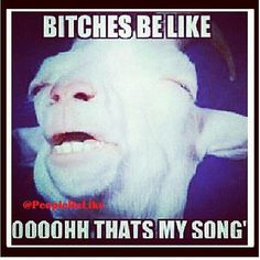 #lol #hahaha #funny