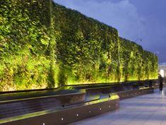 Linear Uplighter Green Vegetation Wall Light Garden Wall