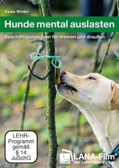 Hunde mental auslasten - Beschäftigungsideen für drinnen und draußen (DVD)