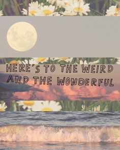 Here's to the weird and the wonderful