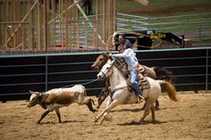 Rodeo at Piiholo Ranch, Makawao, Upcountry.