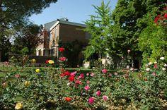 Colle Moro Resort è una realtà ricettiva che comprende, all'interno di una proprietà di sette ettari, il B&B Villa Maria, il B&B I Tre Ciliegi, l'Azienda Agricola Ampolo Rella.    Presente su www.BedAndBreakfastItalia.com #BnBItalia #BnBAbruzzo #BnB #BedAndBreakfast #BeB #BeBItalia #BeBAbruzzo