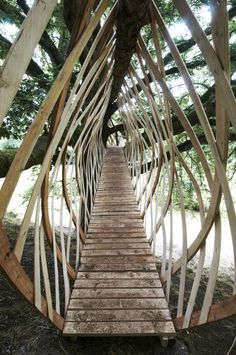 Dartmoor Art Week Treehouse Jerry Tate Architects