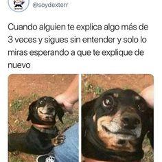 Funny Spanish Memes, Spanish Humor, Funny Memes, Jokes, Pinterest Memes, Lol, Everyday Makeup, Funny Photos, True Stories