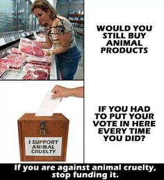 if you are against animal cruelty, please stop funding it; go #vegan for cruelty-free dining