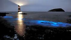 PENMON, WALES Although a rare occasion, the beach at the Wales village lights up in an ethereal blue glow as multitudes of bioluminescent plankton gather around the eastern coast of the island of Anglesey. The phenomenon only takes place when the plankton are disturbed. Late spring and early summer are the best time to see the event.