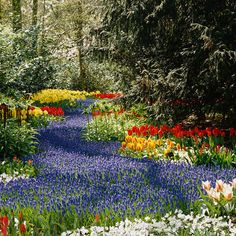Bulb Planting Tips from a Dutch Garden - gorgeous!! Fall is the right time to plant bulbs for a lovely spring bloom