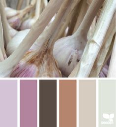 Garlic Hues - January 9 - Color Combo of the Day  #webdesign #graphicdesign #design #inspiration