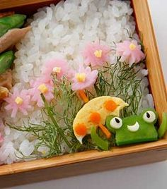 japan food kawaii bento rice vegetable