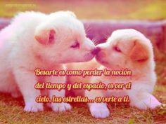 imagenes de perros con frases de amor tiernas