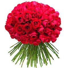 flores-8.jpg (440×447)