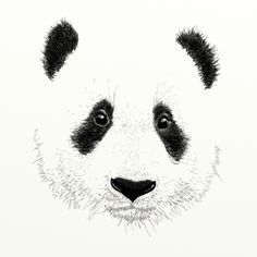 PANDA Art Print by Laure.B | Society6