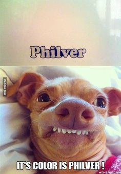 Oh I just love Phteven! :D  #Tunameltsmyheart    <-- Hey look, my first hashtag!