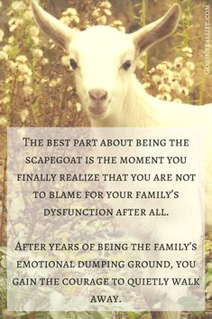 The best part about being the scapegoat is the moment you finally realize that you are not to blame for your family's dysfunction after all. After years of being the family's emotional dumping ground, you finally have the courage to quietly walk away. For more on relationships, faith, and emotional health, check out Godinreallife.com. Scapegoat. Black sheep. Toxic. Parents.