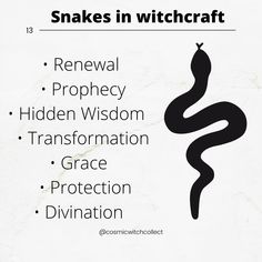 Spiritual Life, Spiritual Awakening, Hecate Goddess, Which Witch, Magic Day, Wiccan Spell Book, Animal Spirit Guides, Witchcraft For Beginners, Writing Promps