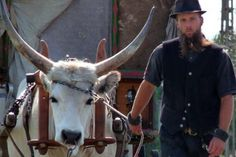 12 years in an ox wagon: A young man on the roads of Hungary ‹ Daily News Hungary