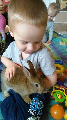 Húsvéti Nyuszisimogatós Aktívmami Fitness :: AktívMami Rabbit, Fitness, Animals, Bunny, Rabbits, Animales, Animaux, Bunnies, Animal