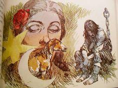 """""""Martín Fierro"""", ilustración de Carlos Roume"""