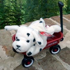 bedb23ab5c2 TY Beanie Babies · 1996 Sparky the Dalmatian (Dotty Tag) PVC Pellets  Generation - SwingTag 4 - TushTag