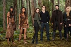 """""""Breaking Dawn: Part 2"""" Textless Theatrical Posters"""