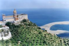 Image result for patti sicily