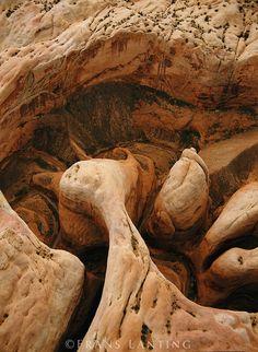 #Feel good...#Love!!!# Halls Creek Canyon (aerial), Capitol Reef National Park, Utah