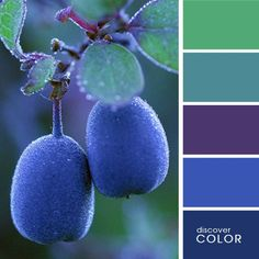 Color palettes - Kleurenpaletten