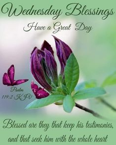 Blessed Wednesday, Good Morning Wednesday, Good Morning Greetings, Psalm 119, Psalms, Wednesday Quotes And Images, Showers Of Blessing, Tumblr Image, 10 News