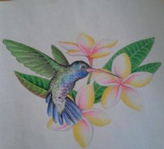 IF I was ever going to get a tattoo (awefully permanent), a hummingbird w/ a plumeria (shown) or a hibiscus in honor of my mom and grandma, and the family history in Hawaii, would have to be it.