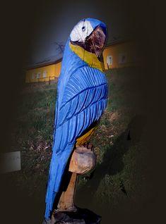 První dřevěná ZOO – RH areál Ostrata – ZOO s dřevěnými exponáty zvířat, ležící ve vesničce Ostrata. Jedná se většinou o řezby motorovou pilou téměř ze všech druhů stromů. Zoo, Parrot, Bird, Animals, Parrot Bird, Animales, Animaux, Birds, Parrots