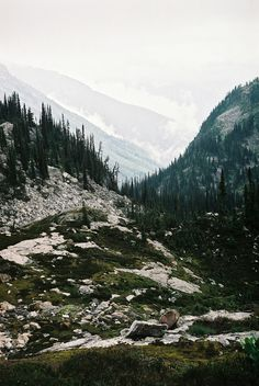 wilderness - nature | life on earth - wild - wanderlust - adventure - explore - natural - mountains - inspiration - photography - hiking - hike