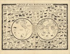 Vintage infographic Dogs of All Nations Map (1936)