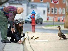 Tendresse entre humains et animaux