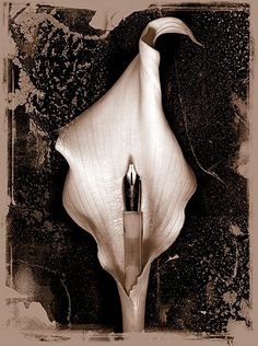 Sandman: Dave McKean's favourite covers - in pictures