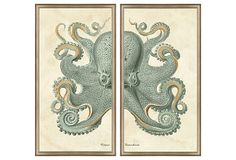 Silver Framed Octopus Diptych on OneKingsLane.com: really lovely but for $389, I could probably make my own