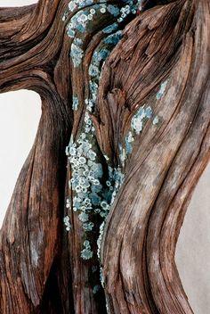 El arte con madera, que no es madera, de Christopher David White