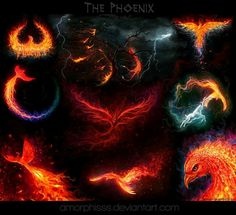 """The Phoenix"" - Christos Karapanos Art http://amorphisss.deviantart.com/gallery/31783957/The-Phoenix"