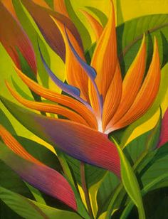 painting by Johnny Karwan. Birds of Paradise Flower Meaning: Birds of Paradise represent joyfulness and [no surprise here] paradise! They are also the wedding anniversary flower.Bula Uro  (Fijian for an informal 'Hello') Let's step into 'paradise' for Exotic Flowers, Tropical Flowers, Birds Of Paradise Flower, Outdoor Wall Art, Hawaiian Art, Tropical Art, Polychromos, Arte Floral, Art Google