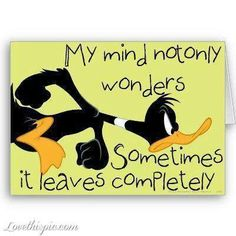 my mind - funny quotes - looney toons daffy duck Cartoon Quotes, Funny Quotes, Funny Memes, Jokes, Life Quotes, Sassy Quotes, Funny Shit, The Funny, Hilarious