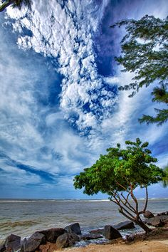 Blue sky during a stormy sea, Puerto Rico (PR) / by Rene Rosado