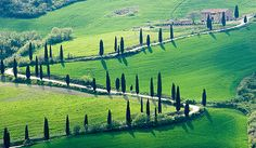The quintessential Tuscan countryside of rolling hills, cypress trees, and farmhouses