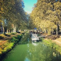 Canal du Midi Canal Du Midi, Ville Rose, Back Home, Toulouse, Travel, Going Home, Viajes, Destinations, Traveling