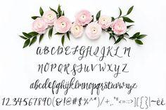 Birchwood Calligraphy Font by Printable Wisdom on @creativemarket