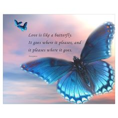 Shop Butterfly Love Small Poster designed by TamedLyon Designs. Butterfly Poems, Butterfly Pictures, Butterfly Art, Butterfly Tattoo Meaning, Butterfly Love Quotes, Blue Butterfly Meaning, Quotes About Butterflies, Meaningful Quotes, Inspirational Quotes