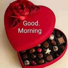 Wish You a Very Happy Chocolate Day. Check out: goo. Morning Morning, Happy Morning, Morning Prayers, Good Morning Good Night, Good Morning Wishes, Morning Qoutes, Morning Messages, Happy Sunday, Happy Chocolate Day