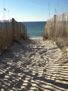 #Gulf Shores, AL # Travel Alabama USA - multicityworldtravel.com We cover the world over 220 countries, 26 languages and 120 currencies Hotel and Flight deals.guarantee the best price
