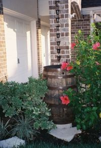 LOVE THIS IDEA!!!! Combining rain chains with rain barrels