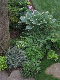 Sally's garden in Maryland--click through for more photos of this garden