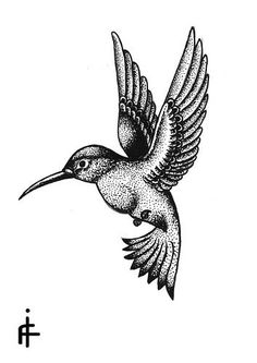 Good dotwork hummingbird tattoo design - Tattooimages.biz